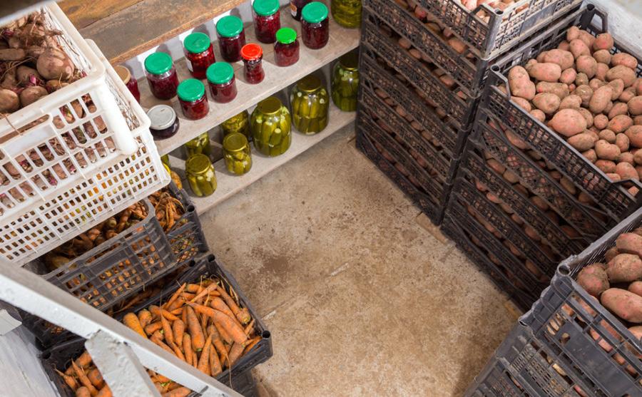 правильное хранение овощей в пластиковом погребе